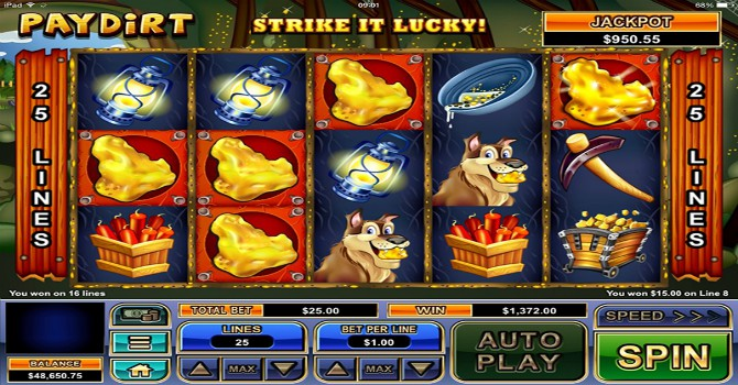 casino's novice win online pokie